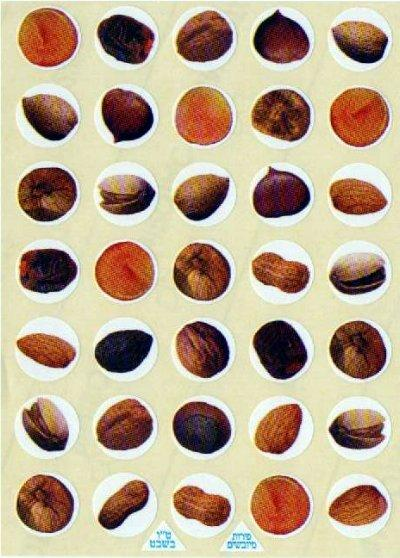 "Nuts and Dried Fruit Stickers 1"" 10 Sheets"