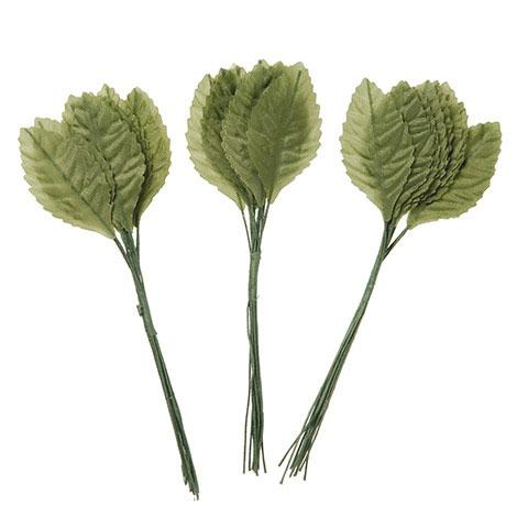 "Single Leaf Green 2.5"" 12 Pieces"