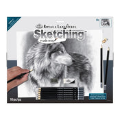 Cautious Eyes Large Sketching Kit