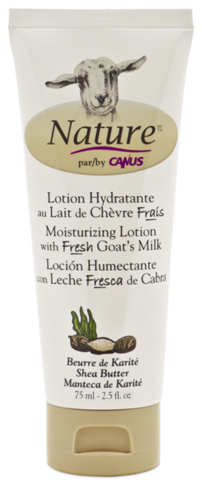 Shea Butter Moisturizing Lotion 2.5 oz