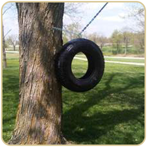 Tree Hugger holding tire swing