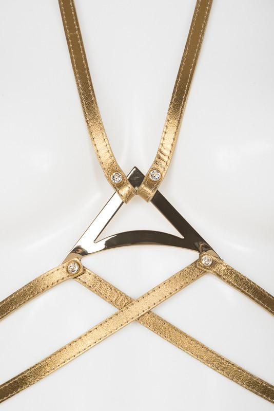 Gold Harness with Swarovski Crystals