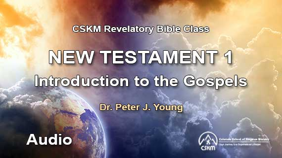 New Testament 1: Introduction to the Gospels (Audio) with Peter J. Young