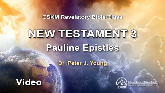 New Testament 3: Romans to Colossians (Video) with Peter J. Young