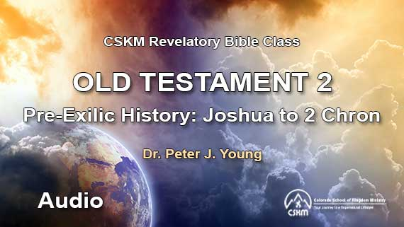 Old Testament 2: Revelatory Bible Class (Audio) with Peter J. Young - Pre-Exilic History: Joshua to 2 Kings