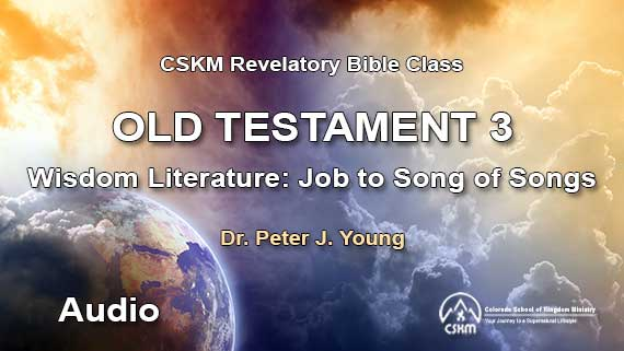 Old Testament 3: Revelatory Bible Class (Audio) with Peter J  Young -  Wisdom Literature: Job to Song of Songs