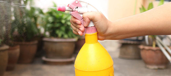 diy all purpose natural cleaning spray
