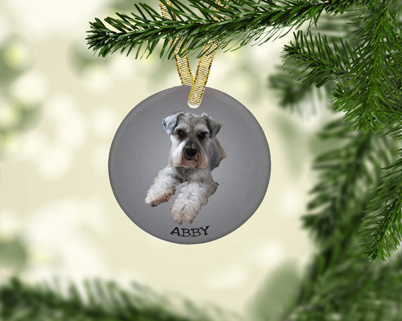 Pet Ornament Christmas