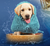 Pet Bath Drying Towel - Charminique