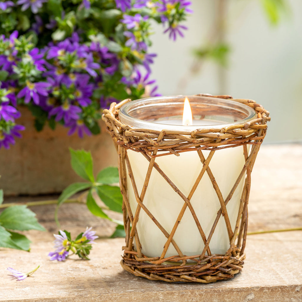 Park Hill Collection Lemon Verbena Willow Candle | Cornell's Country Store