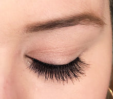 A natural false synthetic eyelash from Dollhouse Lashes in style Classic Beauty