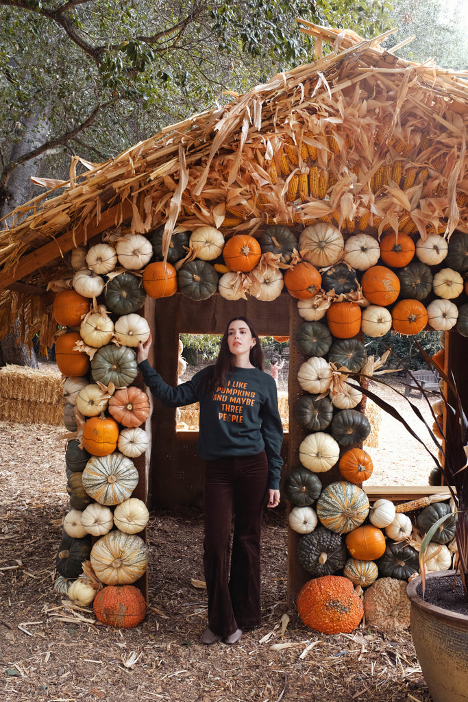 I LIKE PUMPKINS SWEATER