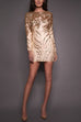 Aurous Long Sleeve Sequin Dress