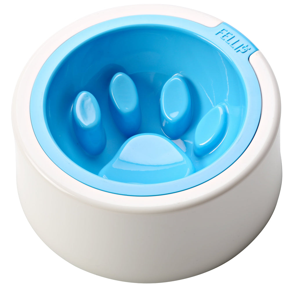 FelliP Aqua Kaleido Good Manners Cat Bowl
