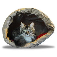 DFBeautifool Cat Cave Paper Bag - Made in Italy