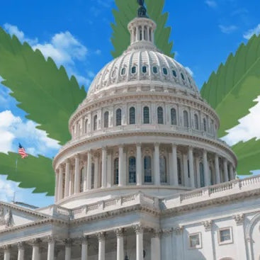 House Reintroduces SAFE Banking Act For Cannabis Industry
