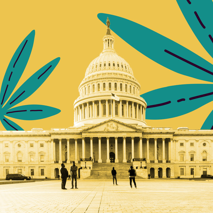 Companies Start To Eye Up USA For Legalization
