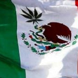 Mexico Sees Legalization As A Possibility In 2021