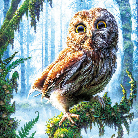 "5D Diamond DIY Forest Owl diamond artwork Kit - 13.6""x13.6"" - Artsndecors"