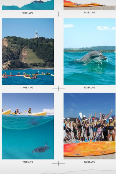 kayak with dolphins byron bay lifestyle
