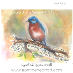 Blue Bird {Matthew 6}