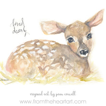 Fawn- Dearly Loved