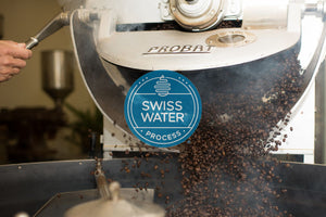fresh roasted swiss water process decaffeinated coffee beans coming out of roaster