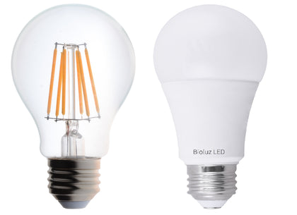 A19 Standard LED Bulbs