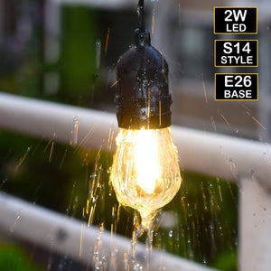 Bioluz LED Outdoor LED String Lights 48Ft LED Weatherproof