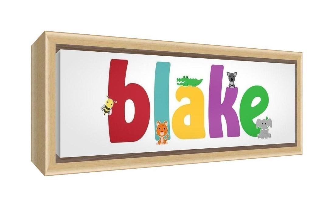 Feel Good Art Framed Box Canvas with Solid Natural Wooden Surround in Cute Illustrative Design Boy's Name (25 x 63 x 3 cm, Medium, Blake)