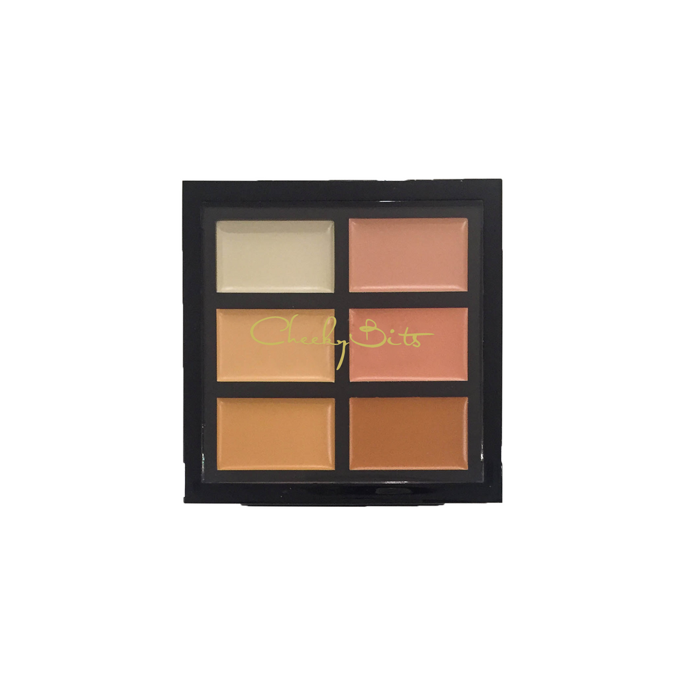 CheekyBits Conceal and Contour Palette