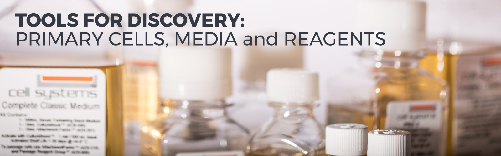 Tools for Discovery: Primary Cells, Media and Reagents