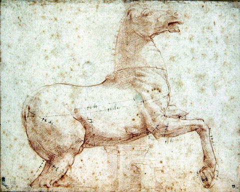 Raphael Sanzio drawing of a horse.