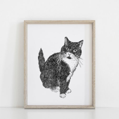 Pet Commission, unique gift, thoughtful gift, hand drawing, personalised gift, hand drawn pet, cat, dog, sketch, portrait,