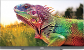 Skyworth 55 inch Android OLED TV