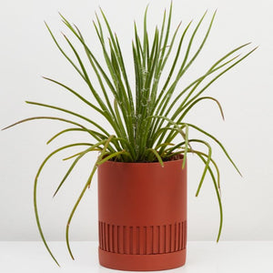 Etch Planter - Brick