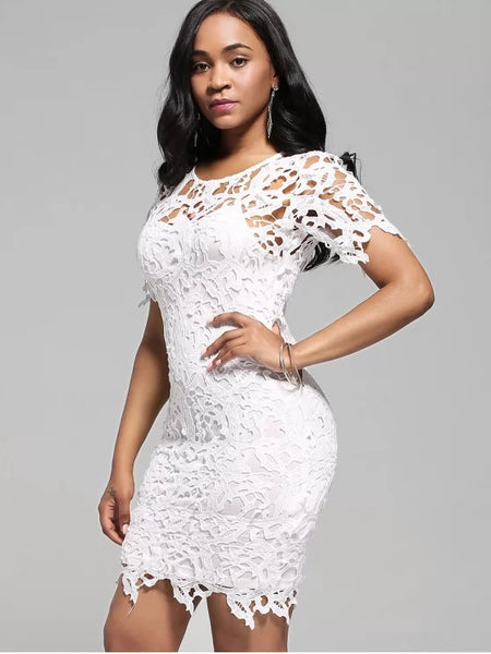 Beautiful Lace Cutwork Pencil Dress with Cami Dress