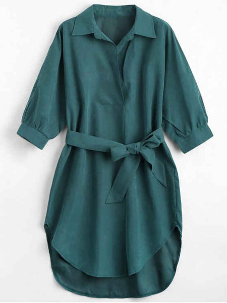 Beautiful Three Quarter Sleeve Belted Shift Dress