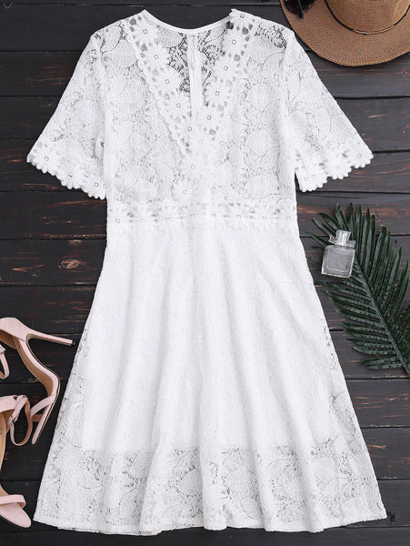 Sheer Plunge Neck Lace Dress