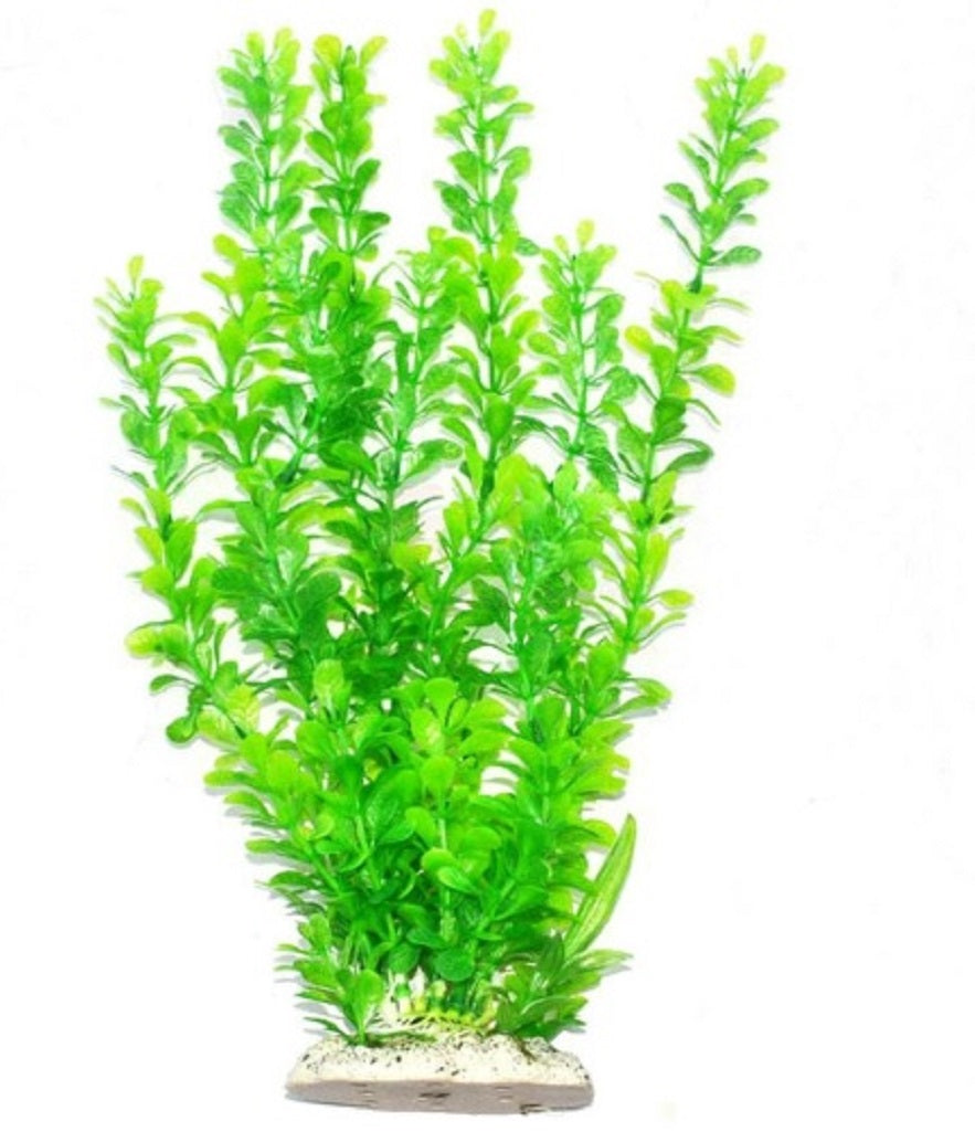 a tall artificial aquarium plant with feathered green leaves