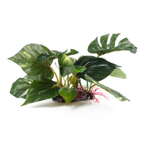 an artificial aquarium plant with large glossy green leaves