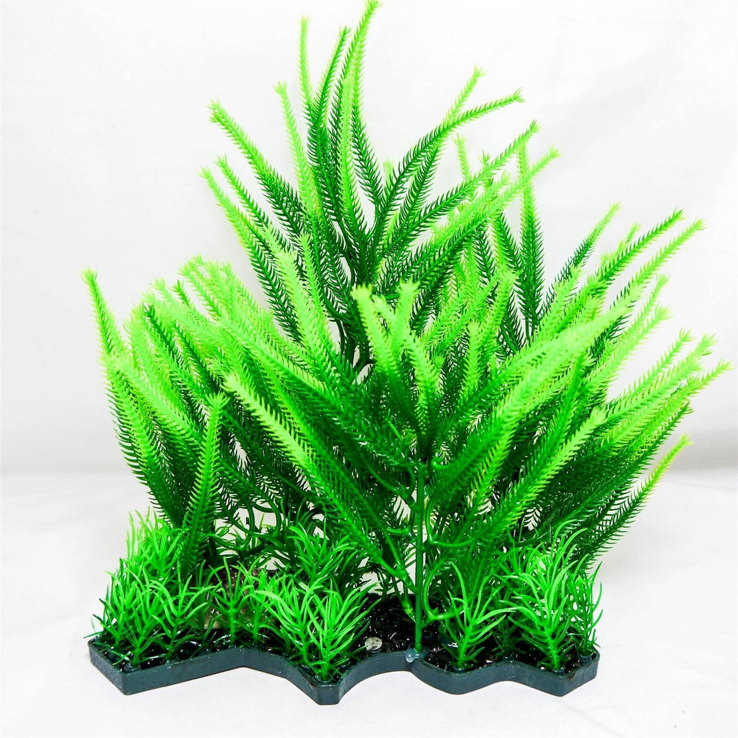 a cluster of green foliage covering plants of various types on a single base