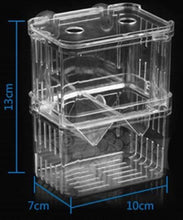 a transparent sectioned aquarium fish hatchery