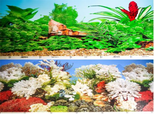 a double sided aquarium background with tropical green plants and gravel on one side and a marine coral scene on the other side