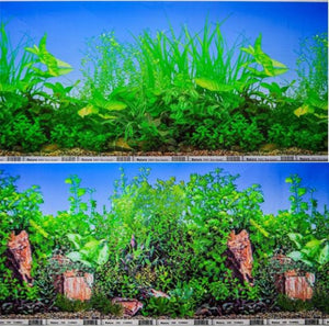 a double sided aquarium background with lustrious green tropical plants set in crystal clear blue water