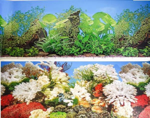 a double sided aquarium background with large leaf green plants with bog wood on one side and a marine coral scene on the other side