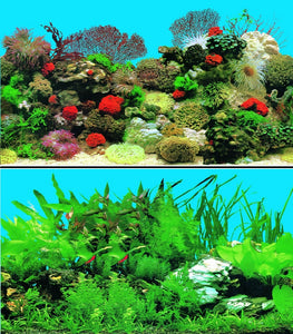 a double sided aquarium background with red coral and tropical fish and plants