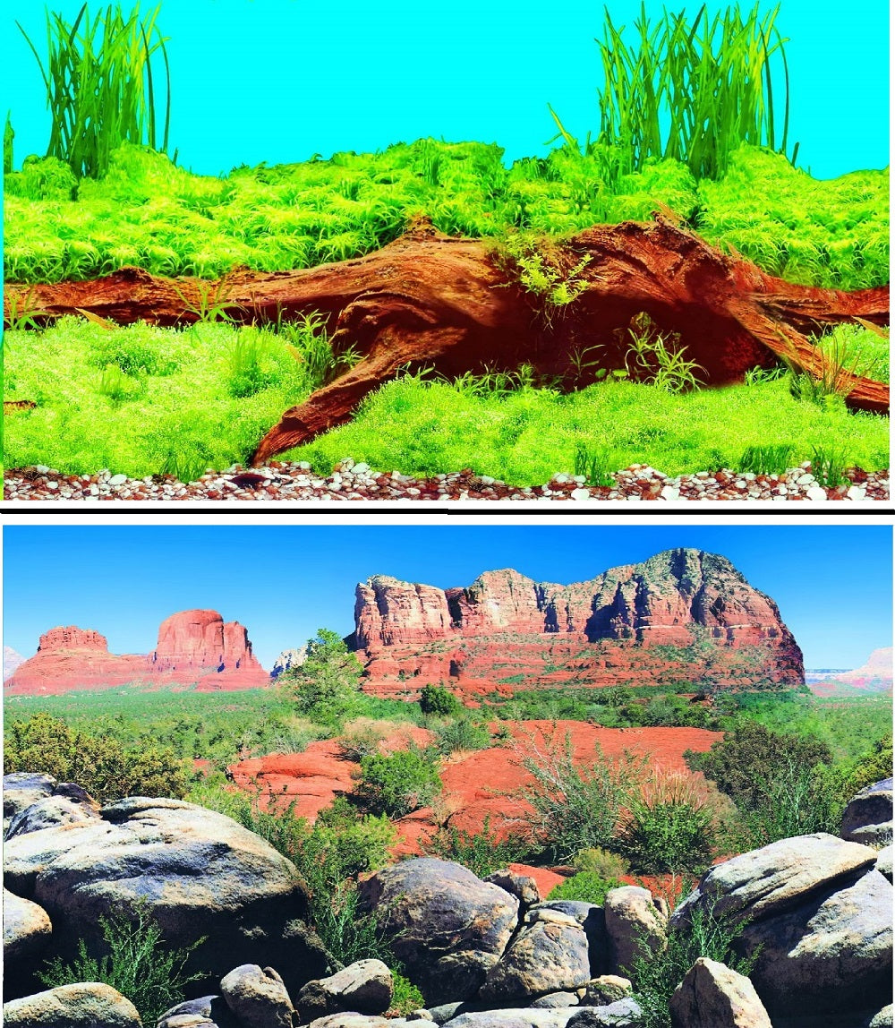 a double sided aquarium background with bogwood and a rocky desert scene