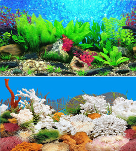 a double sided aquarium background with coral plus green and red plants