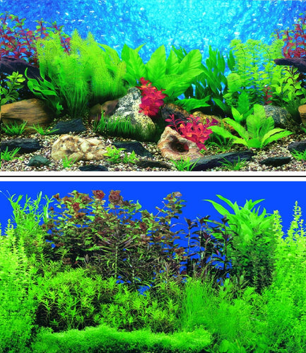 a double sided aquarium background picturing lustrious shades of green tropical plants under a deep blue water